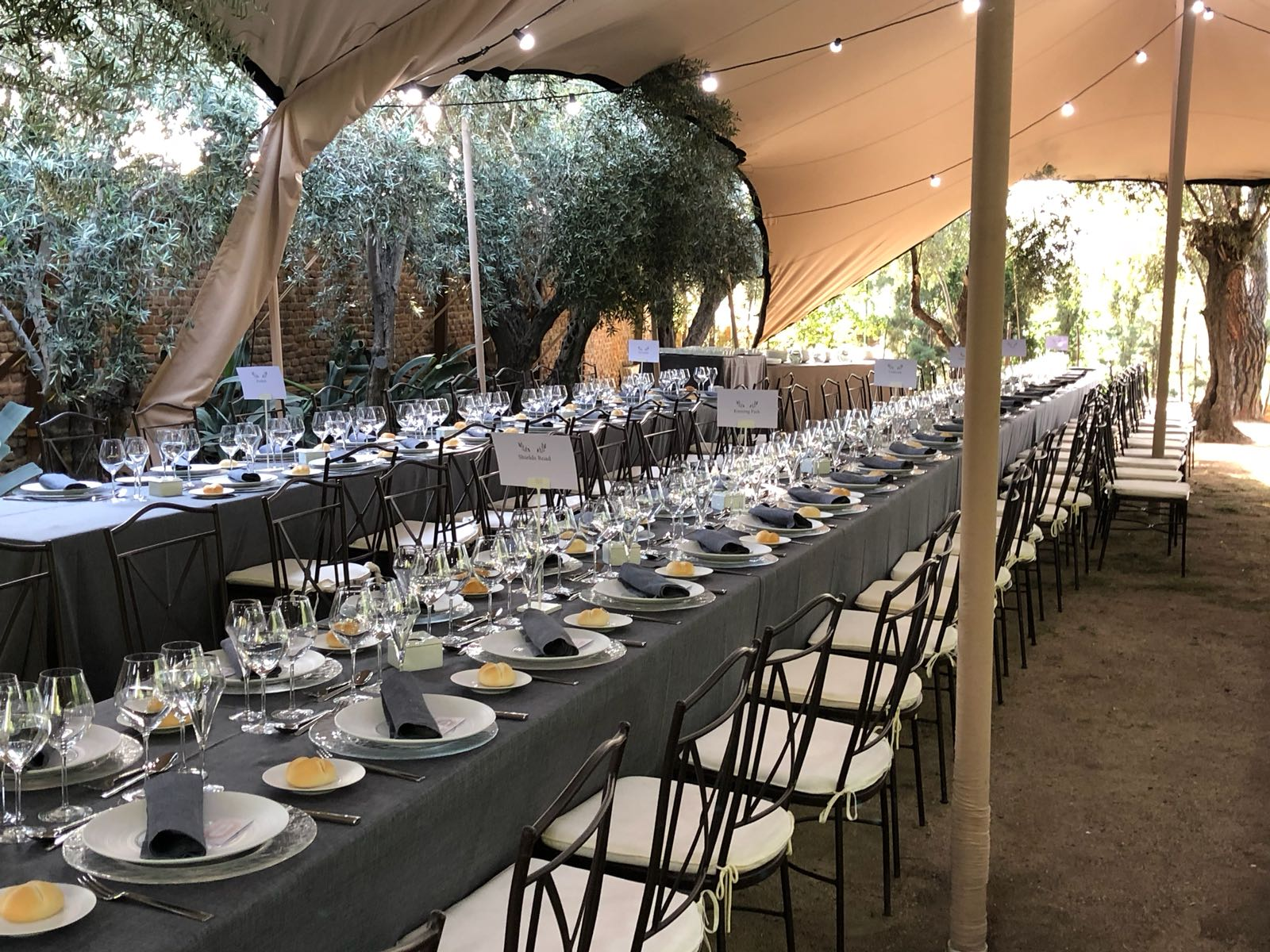 Carpas para eventos - Safara Carpas
