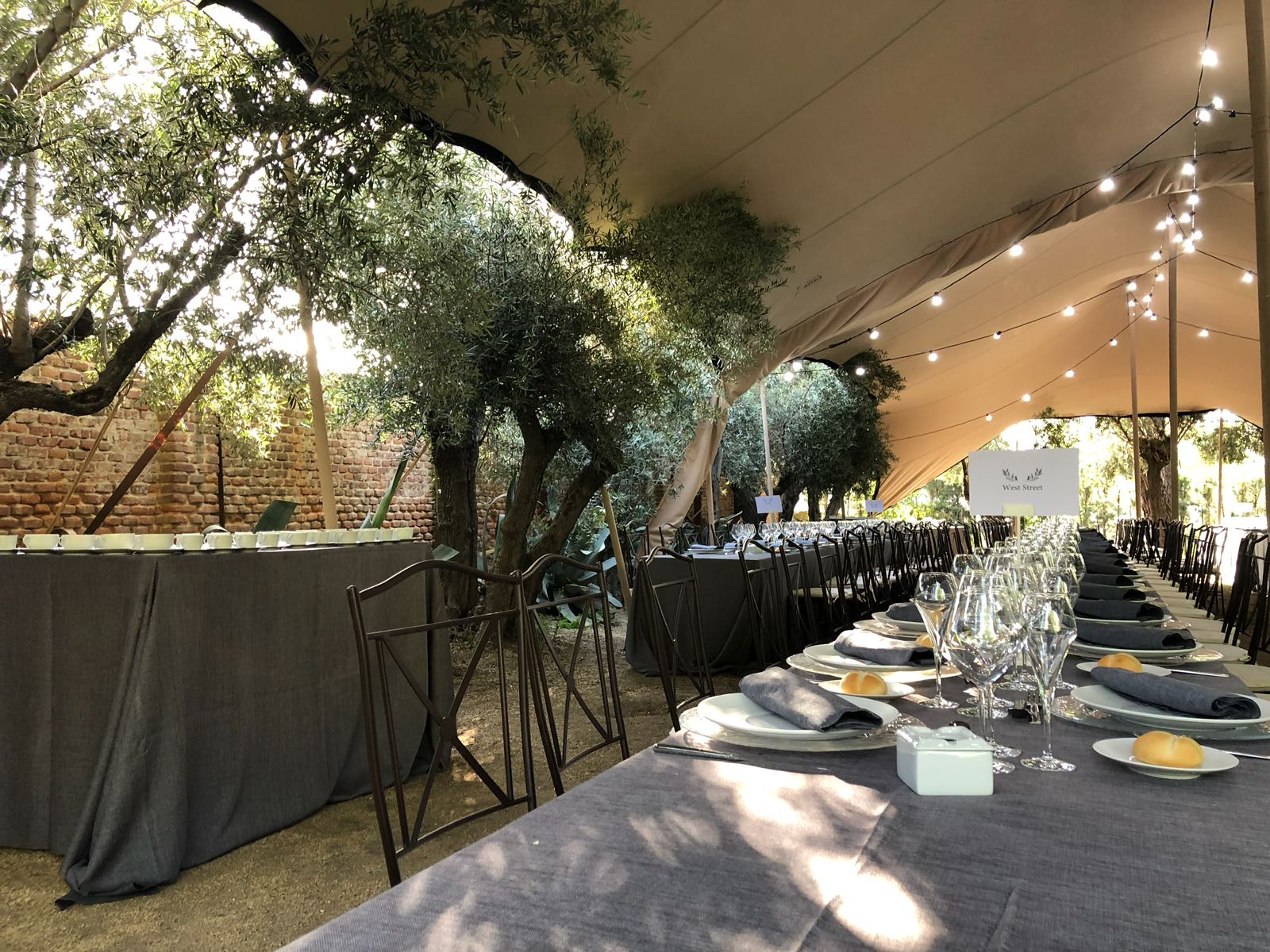 Carpas para bodas - Safara Carpas